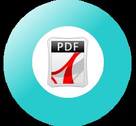 PDF25